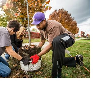 In coordination with generous sponsorships from UPS, The Nature Conservancy, Brown-Forman, and Brightside planted trees for a community-wide planting day.