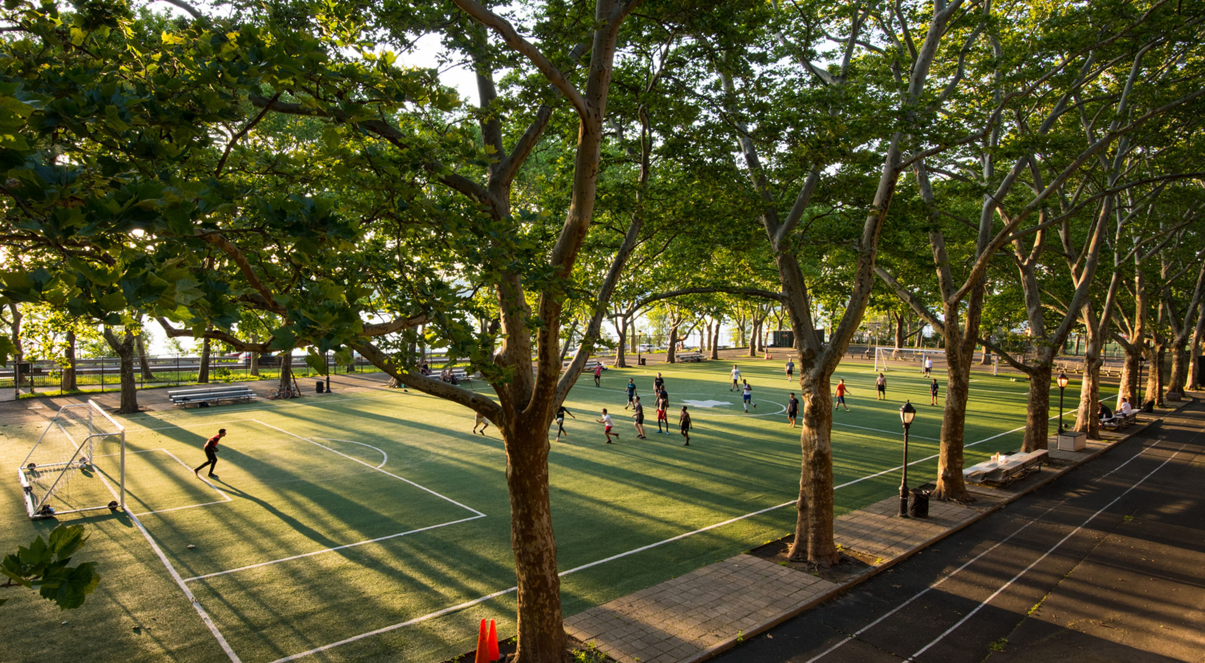 London Plane trees line a busy NYC soccer field.