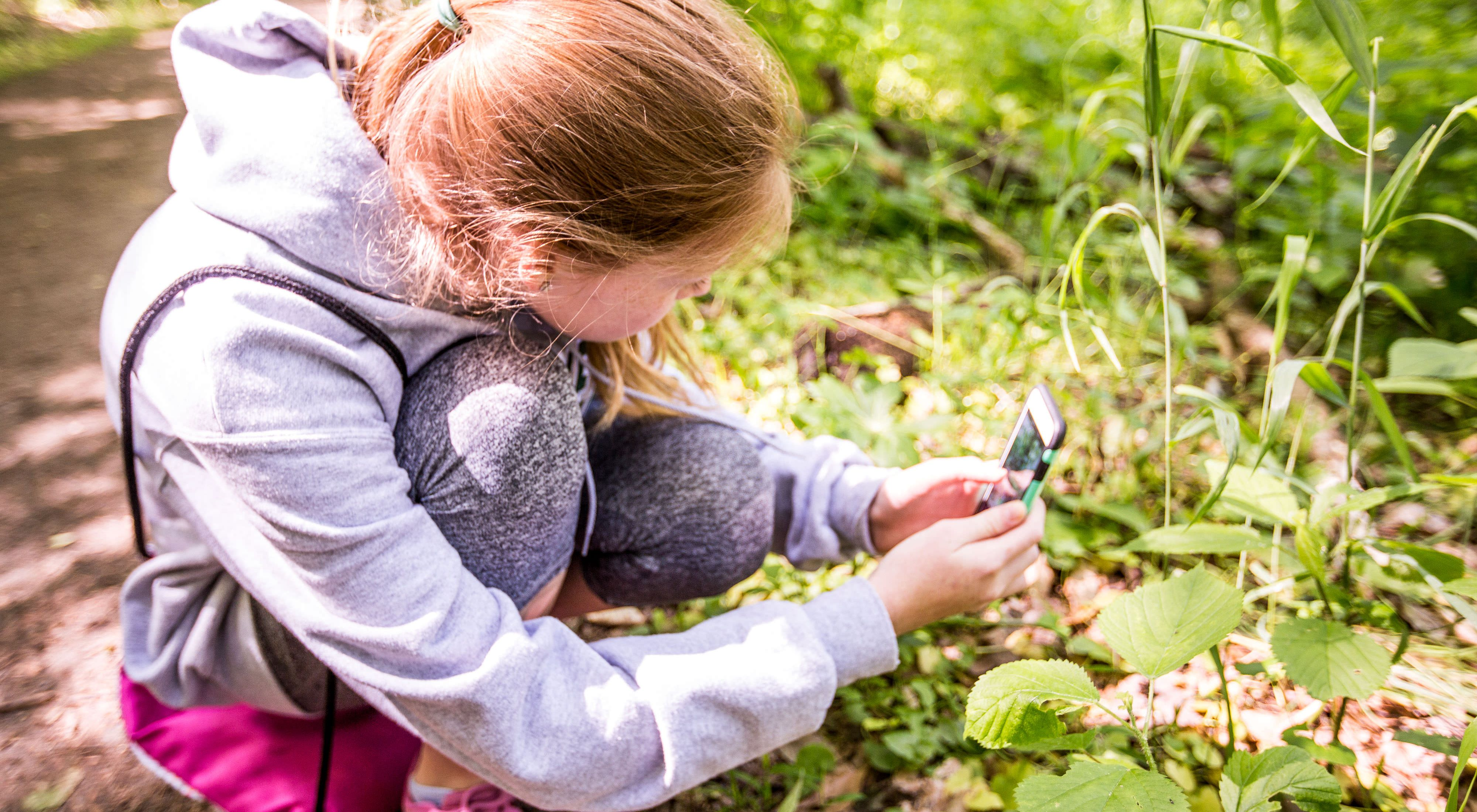 A young girl crouches down next to a tall leafy plant to take a photo with her cell phone.
