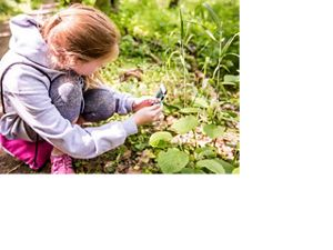 A girl takes a photograph of a species of plant to upload to iNaturalist.