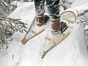 A pair of sturdy boots and snowshoes.