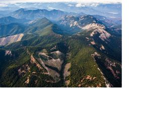 Aerial view of the Great Western Checkerboards Project south of Cabin Creek, Washington with patches of cut forest interspersed with replanted forest in the Cascade Mountains. The Great Western Checkerboards Project preserves recreational access and helps conserve the ecological integrity of 165,073 acres – 257 square miles – of forests, rivers and wildlife habitat in the Cascade Mountain Range of Washington and in the Blackfoot River Valley in Montana. This transaction with Plum Creek is one of the largest land acquisition projects ever undertaken by the Conservancy.