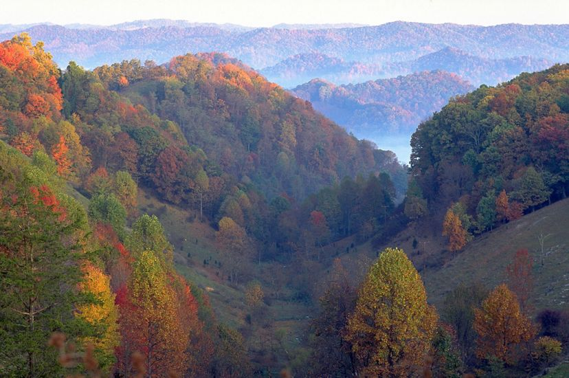 Autumn view of forested ridges in the Clinch Valley. Mist fills the valleys as the mountains stretch to the horizon.