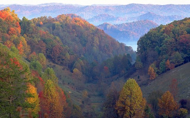 Autumn view of forested ridges in the Clinch Valley