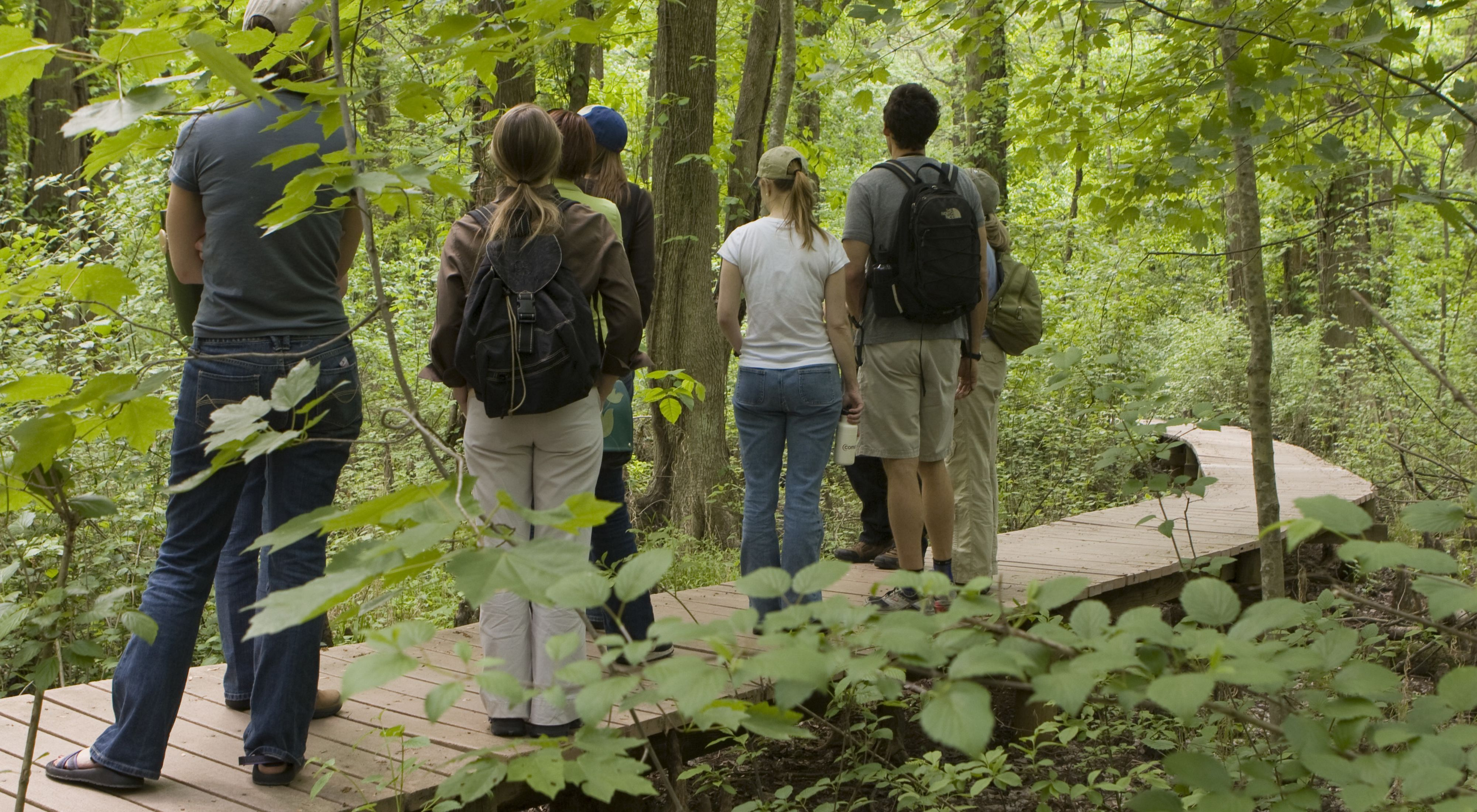TNC staff members tour Battle Creek Cypress Swamp, the Conservancy's first preserve in Maryland.
