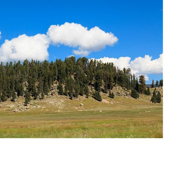 Hillock at Valles Caldera National Preserve. The Rio Grande Water Fund will generate sustainable funding for a 10-30 year program of large-scale forest and watershed restoration treatments.