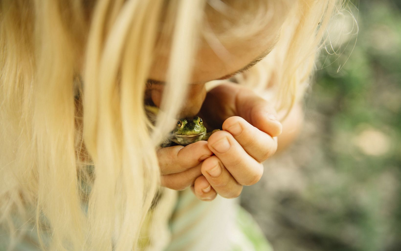 A young girl cradles a bullfrog in the Ozarks of Arkansas.