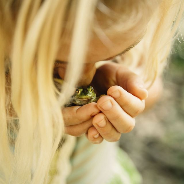 A young girl cradles a bullfrog in Arkansas