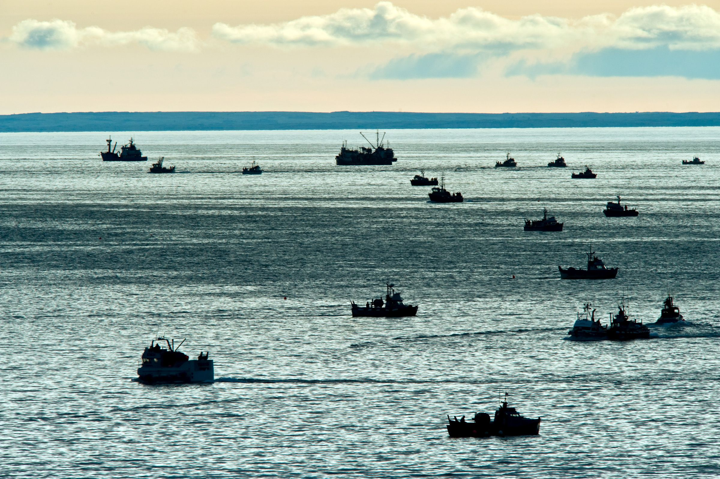 Commercial fishing fleet with larger transport boats.
