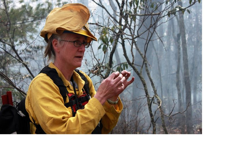 A woman wearing yellow fire retardant gear and hard hat standing in front of a tangled stand of small trees and vines. Smoke rises behind her from a controlled burn.