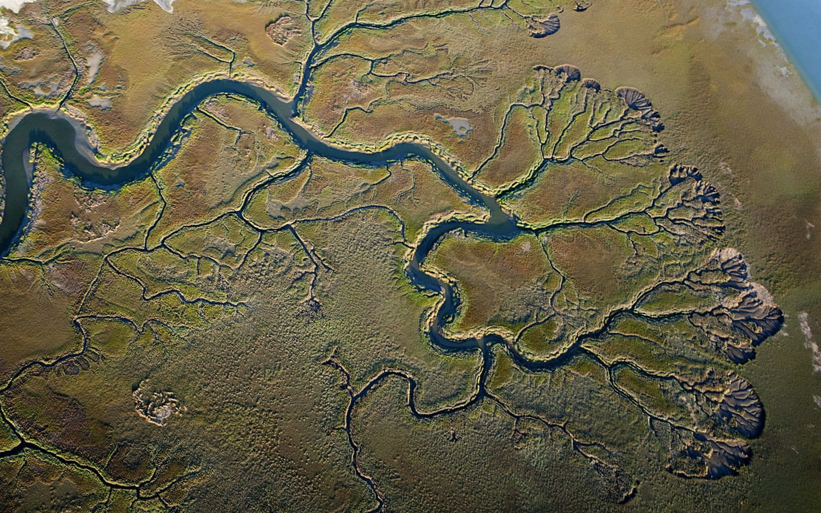 An aerial view of a river delta with distinct yellows,