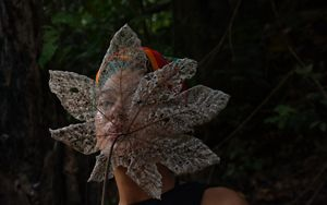 A model holding the ribs of a dry leaf