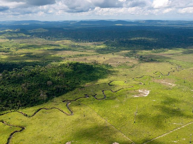 An aerial view showing forest cleared for cattle ranching at Sao Felix do Xingu, a municipality in the Brazilian Amazon that has one of the highest rates of deforestation in the country.