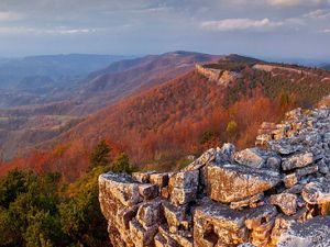 Panther Knob Preserve in West Virginia