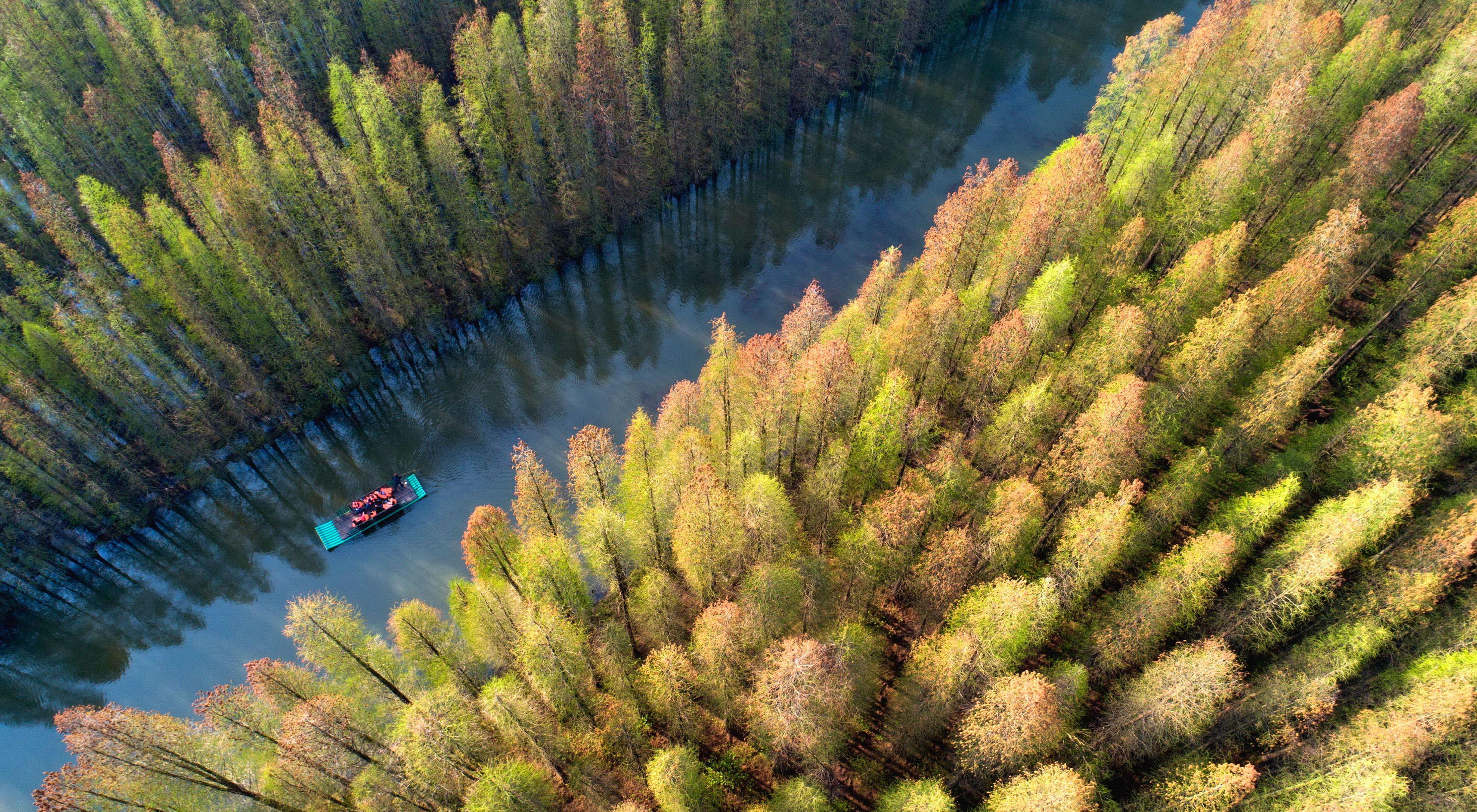 Tourists drift on a bamboo raft in jinhu county, huai 'an city, east China's jiangsu province, April 13, 2019.