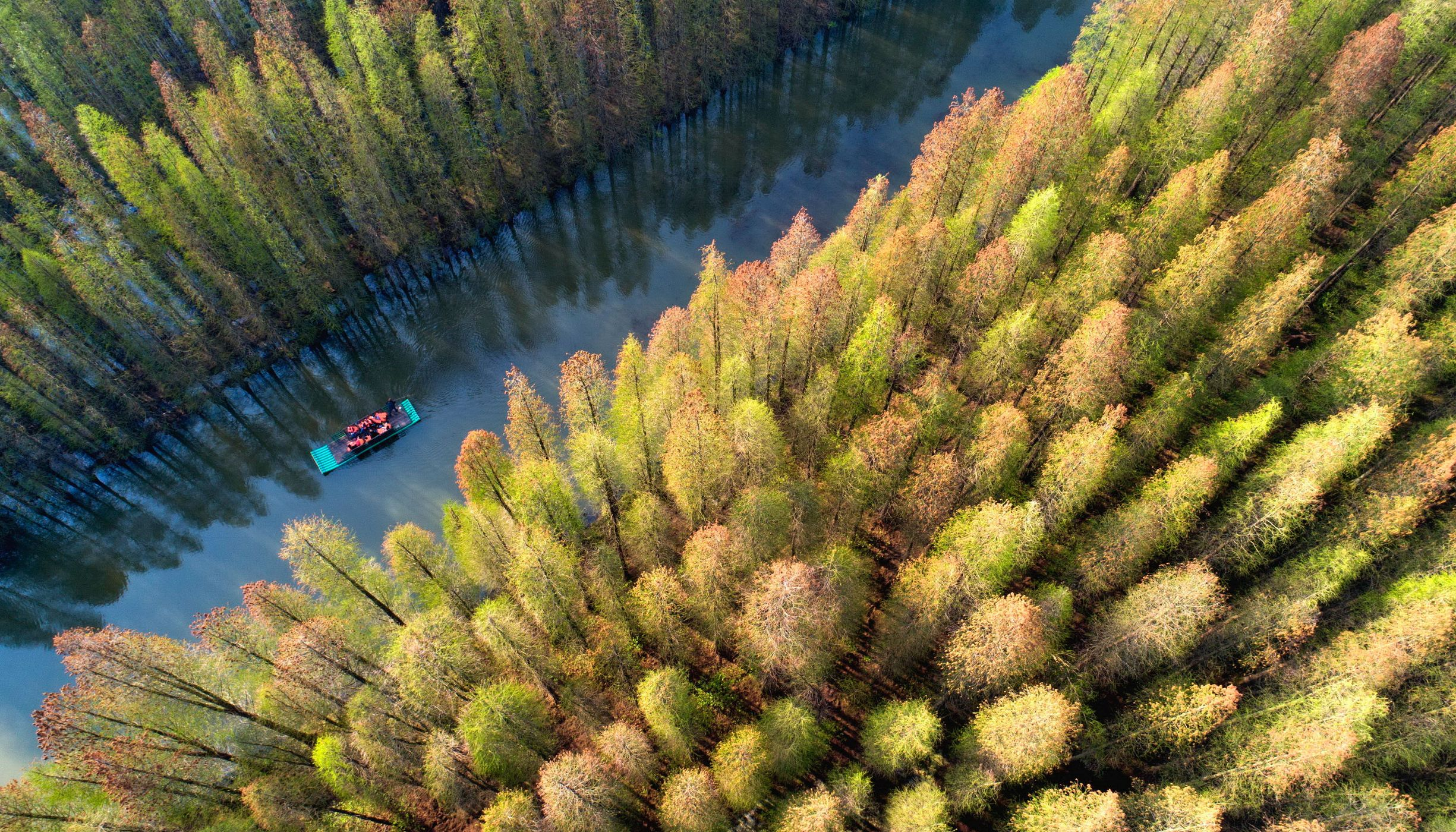 A boat travels down a river through the forest in China