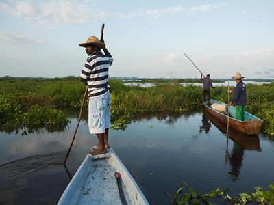 Local fishermen navigate through the Magdalena River Basin in Colombia.