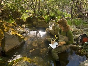 The Nature Conservancy's Applied Scientist, collecting data at various locations in the Garcia River Forest