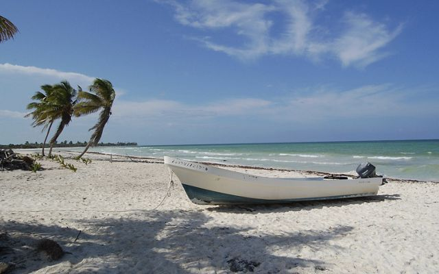 In 2001 TNC purchased Pez Maya, a stretch of coast within Sian Ka'an Biosphere Reserve on Mexico's Yucatan Peninsula.