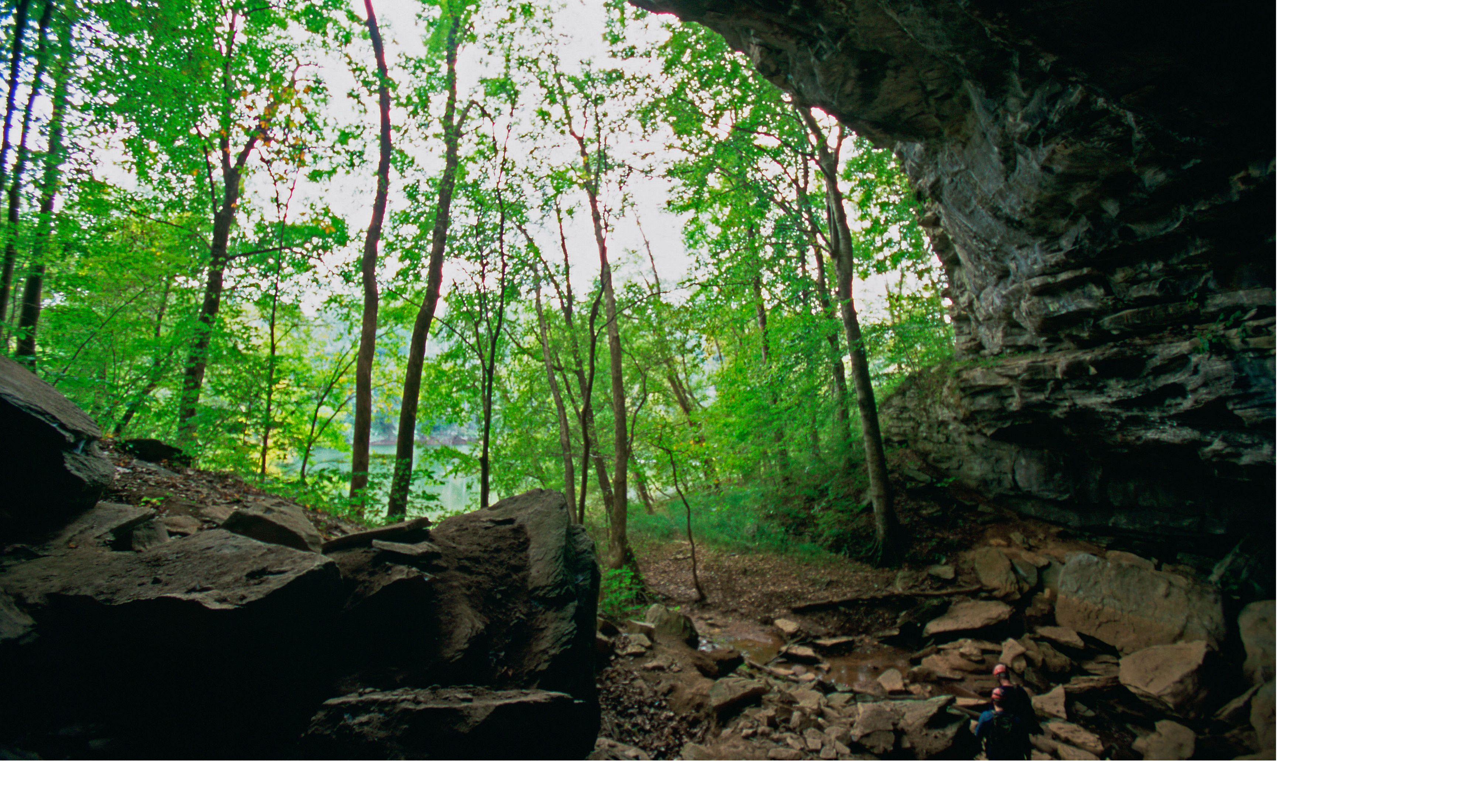 View from inside a Tennessee cave.