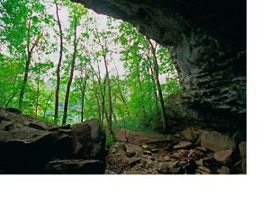 A cave opening frames a green forest.