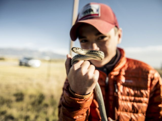 A young visitor holds a garter snake