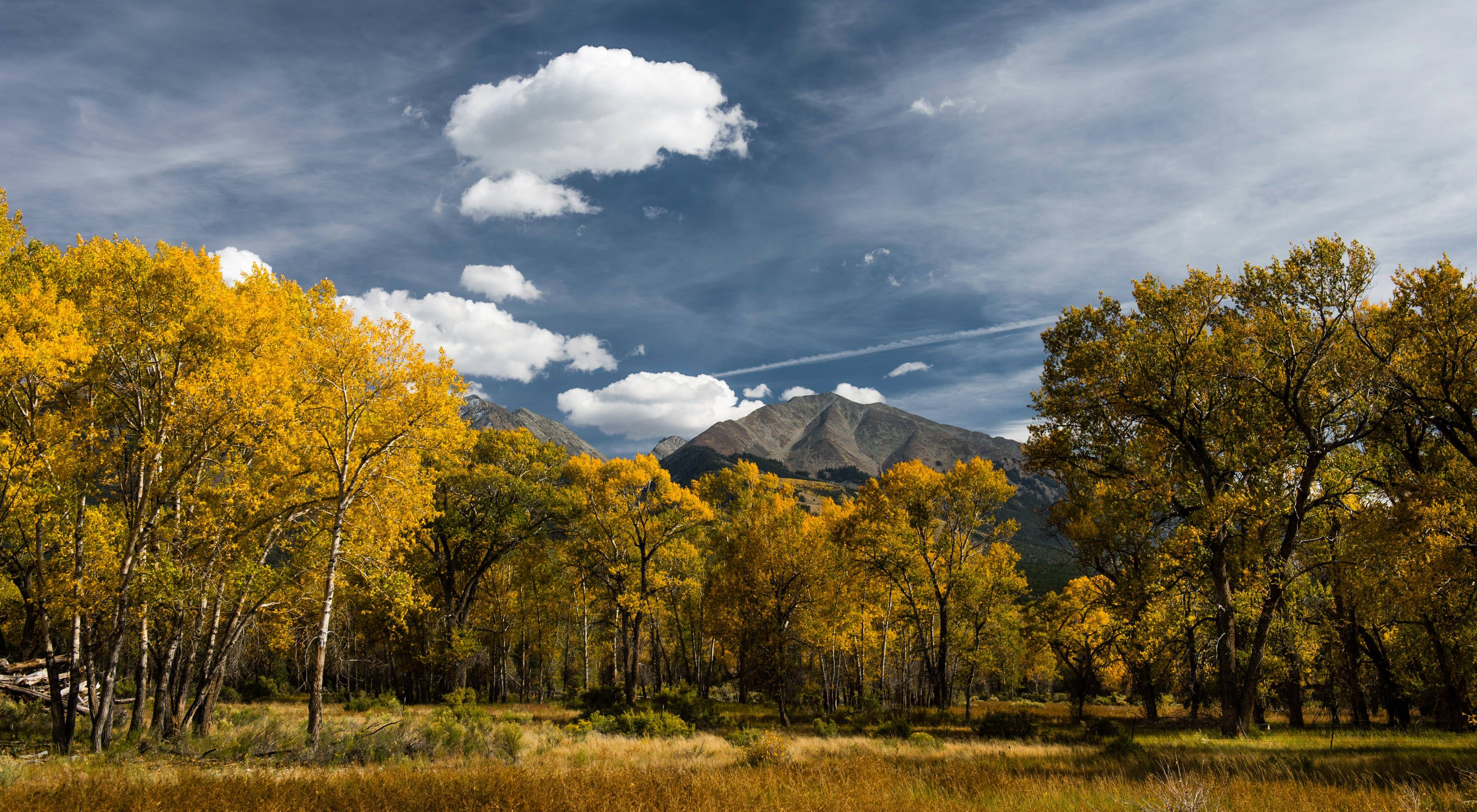 A view of fall colors and mountains on The Nature Conservancy's Zapata Ranch, Colorado USA.