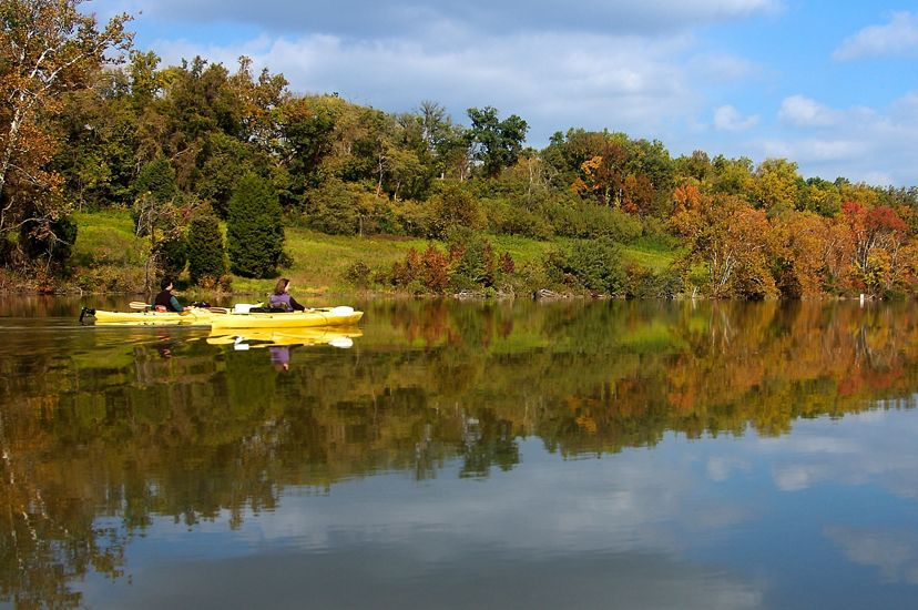 Two people in yellow kayaks paddle along a wide creek. The bank is lined by trees beginning to show fall color. The trees are reflected in the still water.