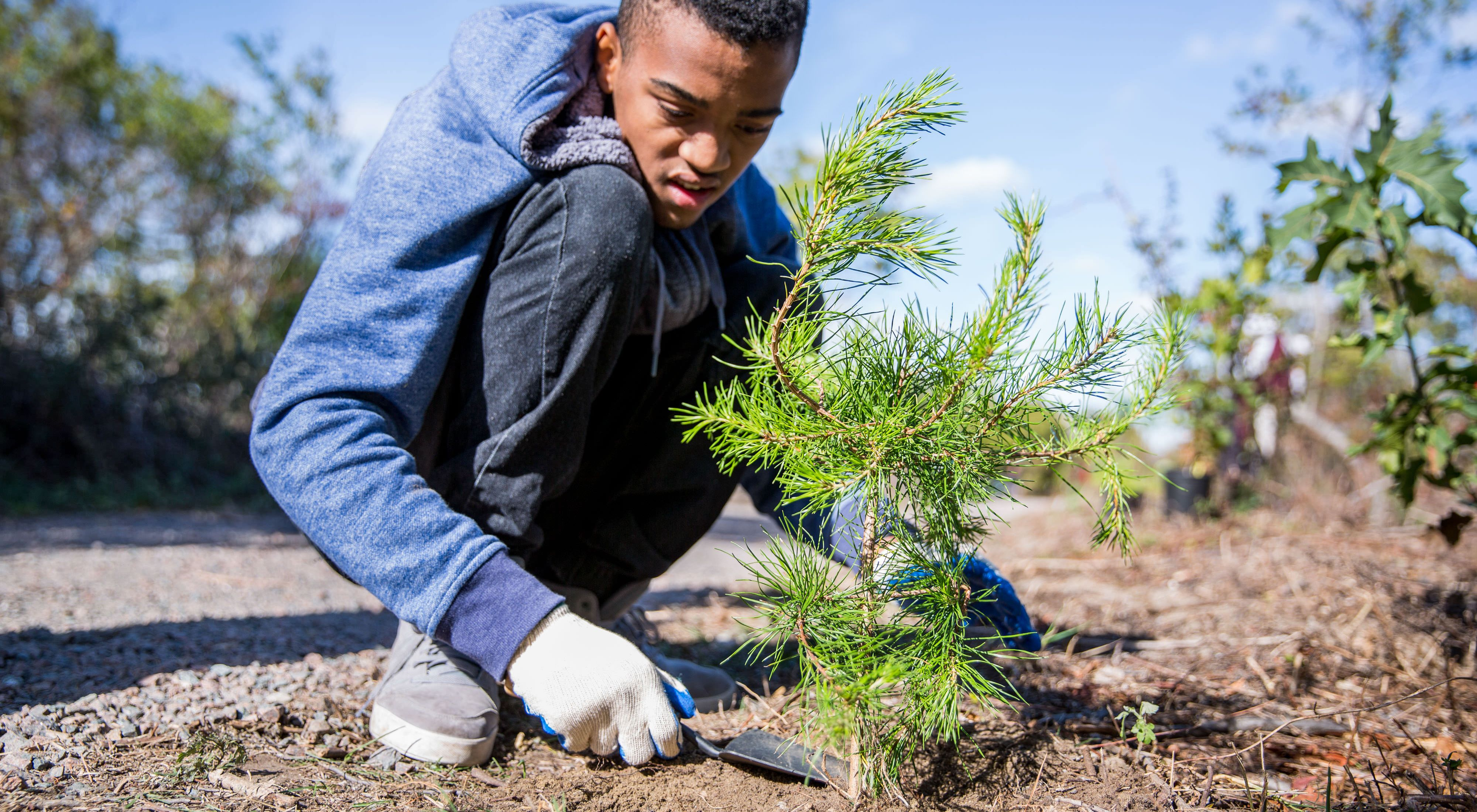 The Conservancy's Urban Conservation program in New York City hosted a large-scale tree-planting event at Jamaica Bay Wildlife Refuge.