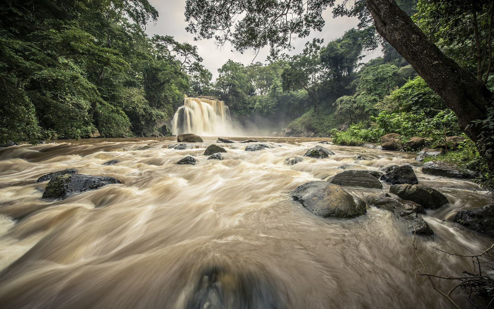 The Nature Conservancy is working to protect the Upper Tana Watershed in Kenya and provide cleaner, more reliable water for Nairobi.