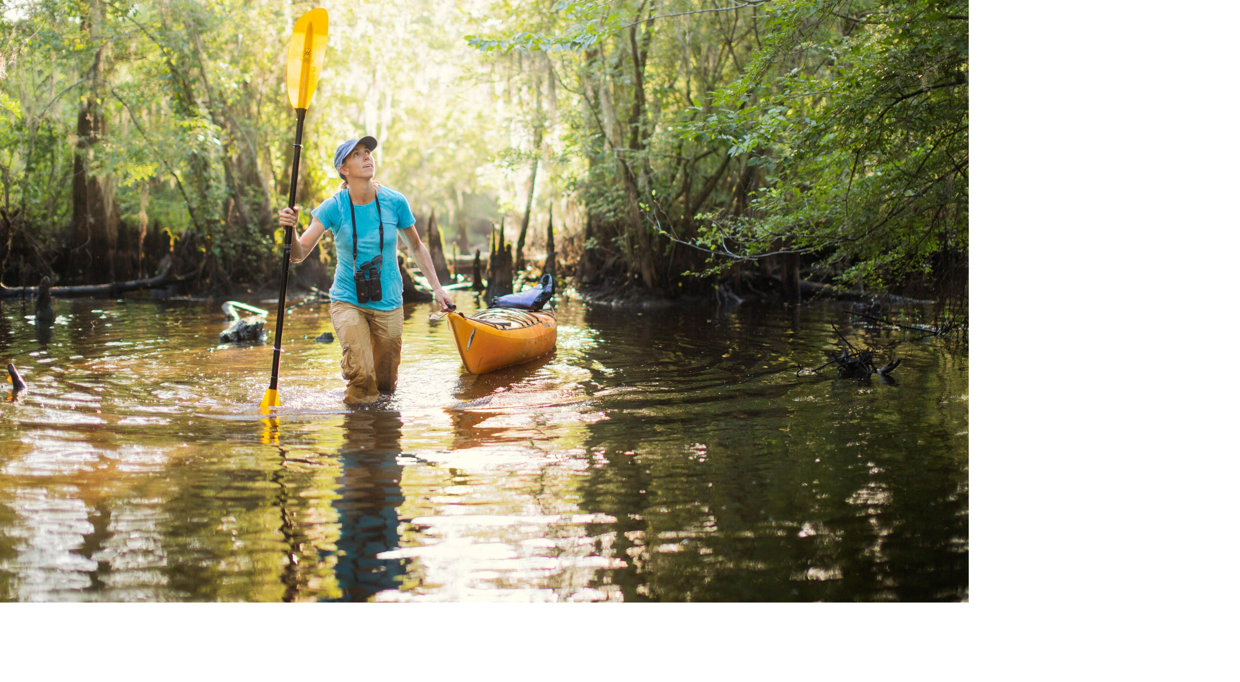 The Conservancy's Maria Whitehead treks through cypress swamps in South Carolina's Black River Preserve.