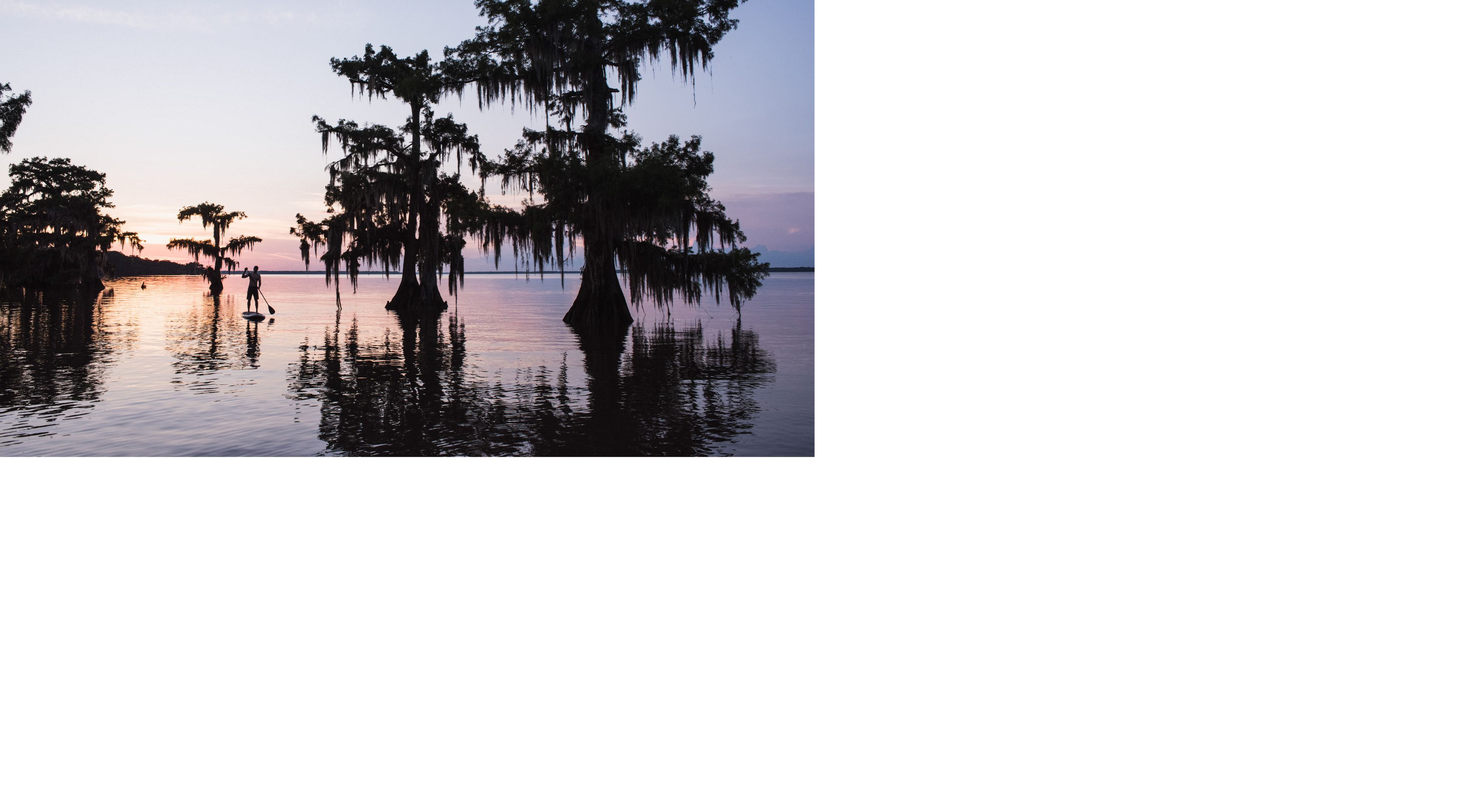 A man enjoys paddleboarding among the cypress trees in Lake Fausse Point, Louisiana.