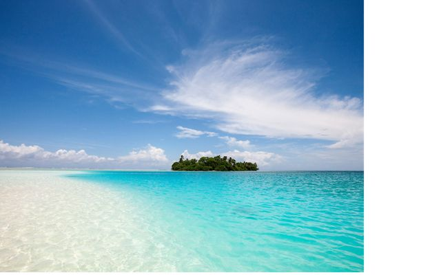 Palmyra Atoll is a small, lush island surrounded by blue-green water