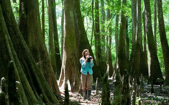 A portrait of TNC's Christi Lambert with cypress trees.
