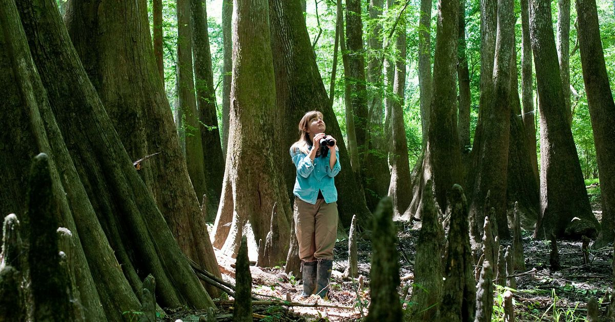 A portrait of TNC's Christi Lambert with cypress trees