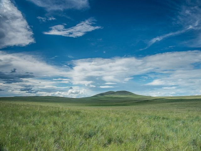 Vast grasslands under blue skies.