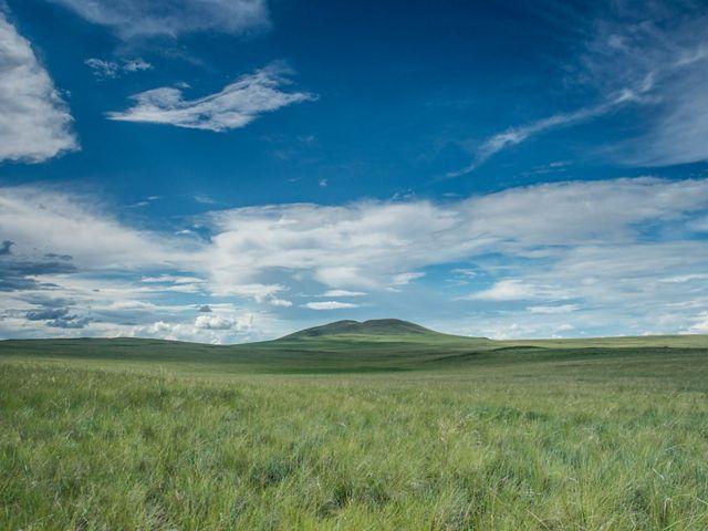 Mongolia's Eastern Steppe