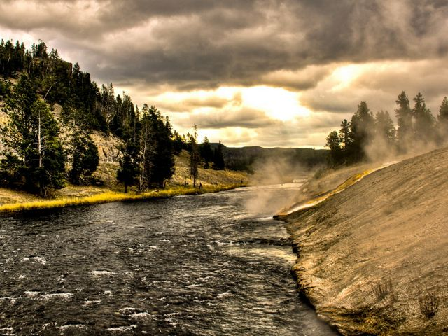 Overcast river's edge in Yellowstone National Park.