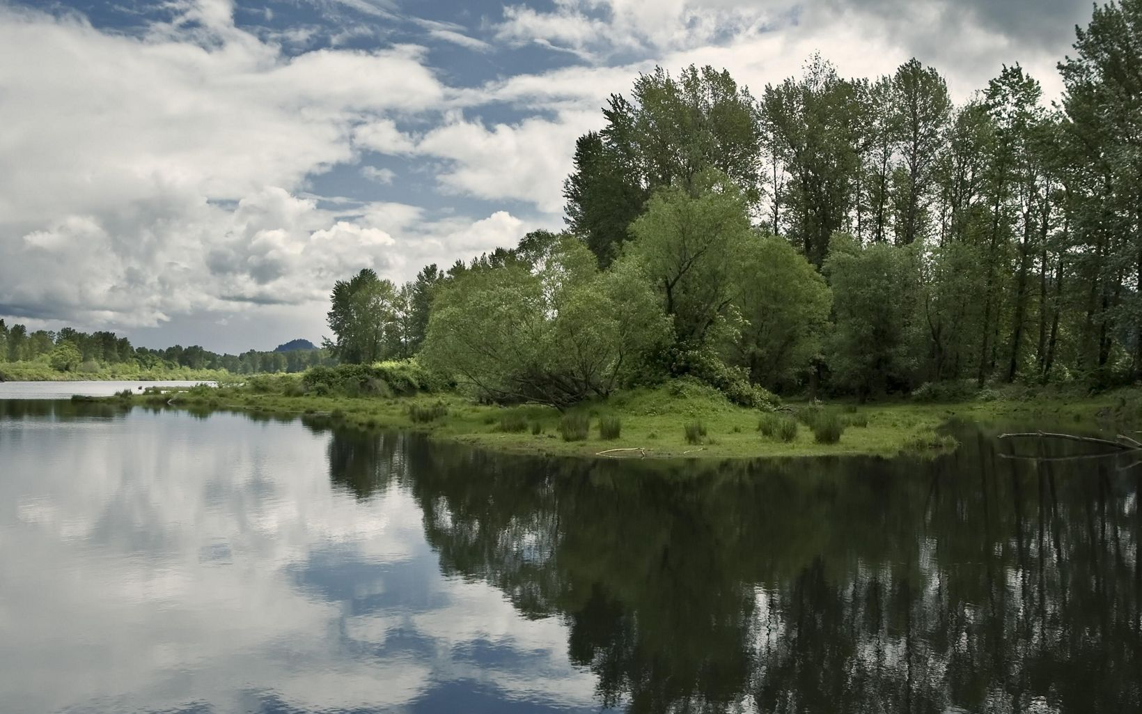 With extensive habitats increasingly endangered in Oregon's Willamette Valley, the Willamette Confluence project includes six miles of river corridor, floodplain forest, wetlands, upland oak woodlands and native prairie.