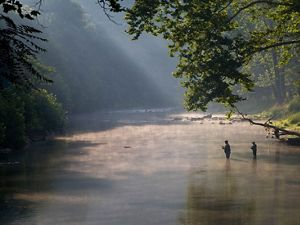 How We Protect Watersheds