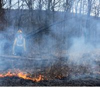 prescribed-fire