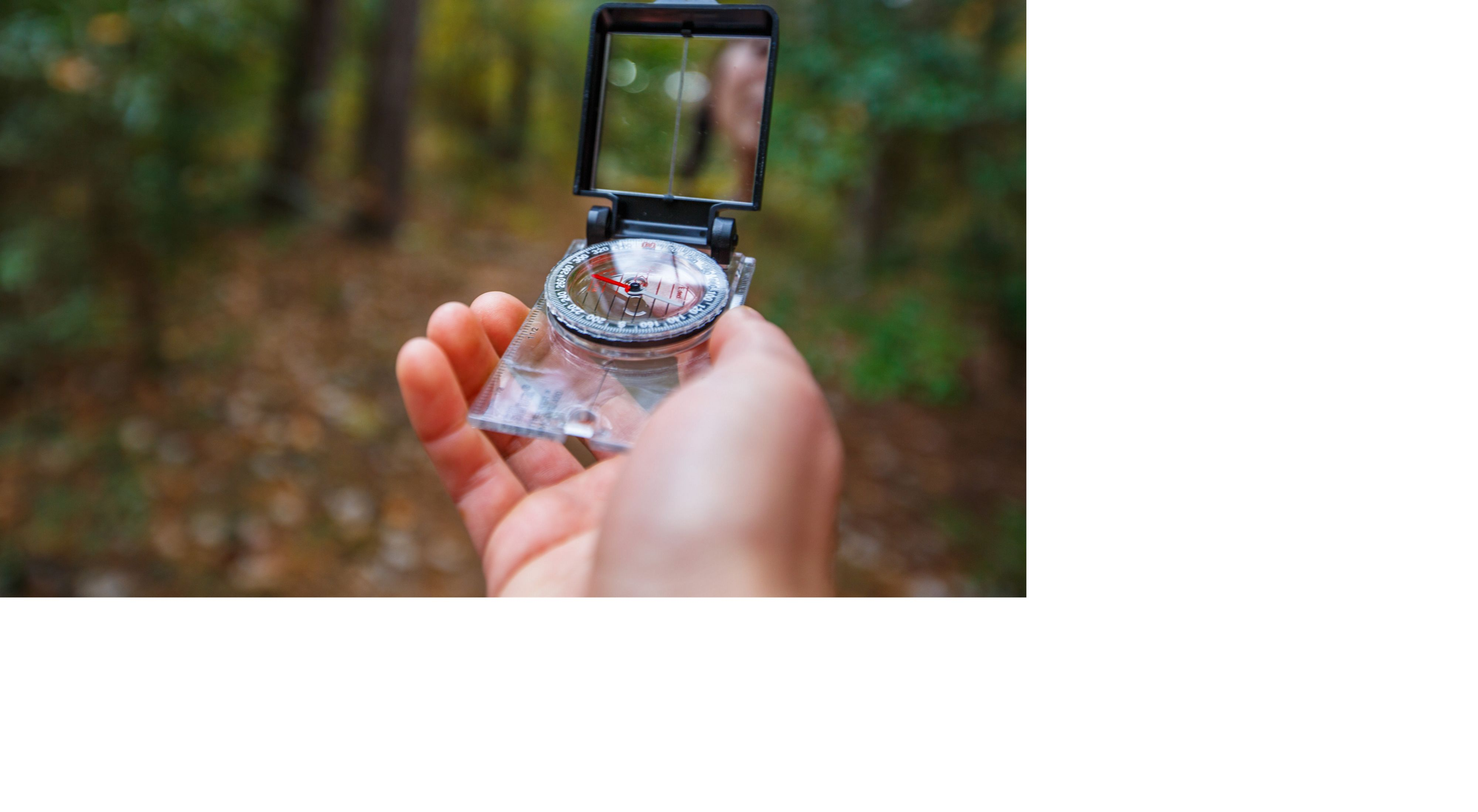 A hiker uses a compass while hiking in the woods.