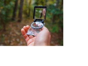 Bekah Herndon references a compass while hiking the Sweetgum Swamp Trail in the Nags Head Woods Preserve.