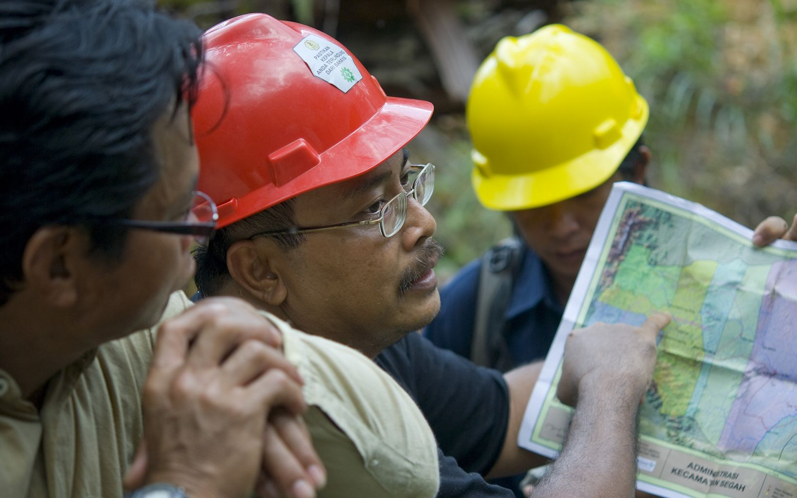 The Nature Conservancy's Bambang Wahyudi (center) works with logging companies to practice reduced-impact logging (RIL).