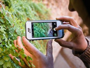 woman uses iPhone to photograph foliage while hiking