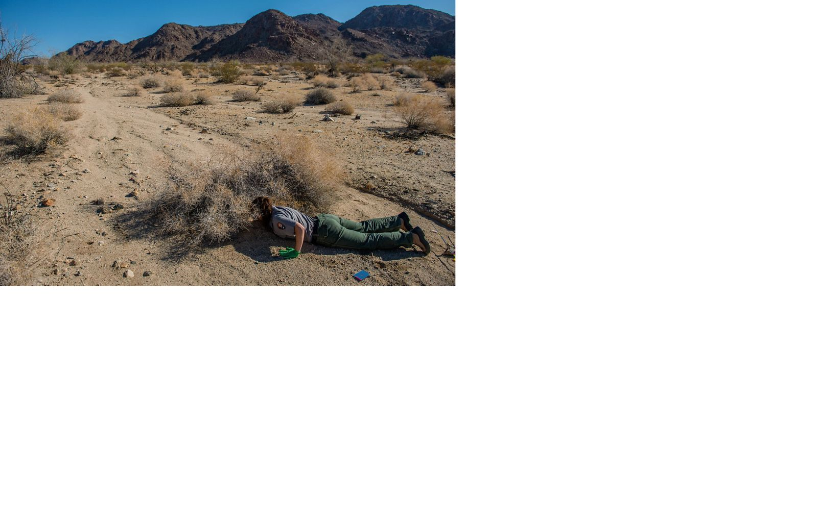 Kristen Lalumiere places tracking location transmitters on a desert tortoise in Joshua Tree National Park.