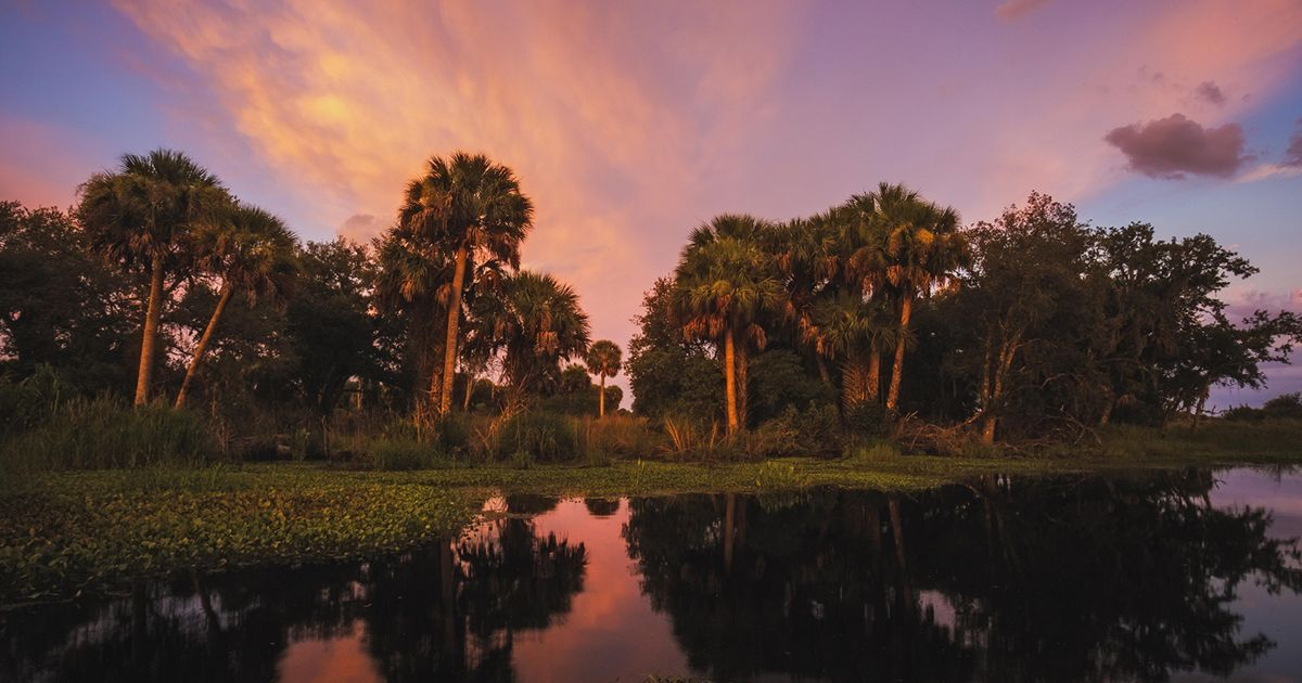 Sunset illuminates the wetlands along Lykes Brothers Ranch near Palmdale, Florida.