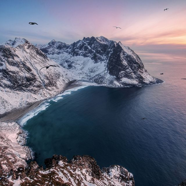 Birds fly high above the Lofoten Islands, Norway.