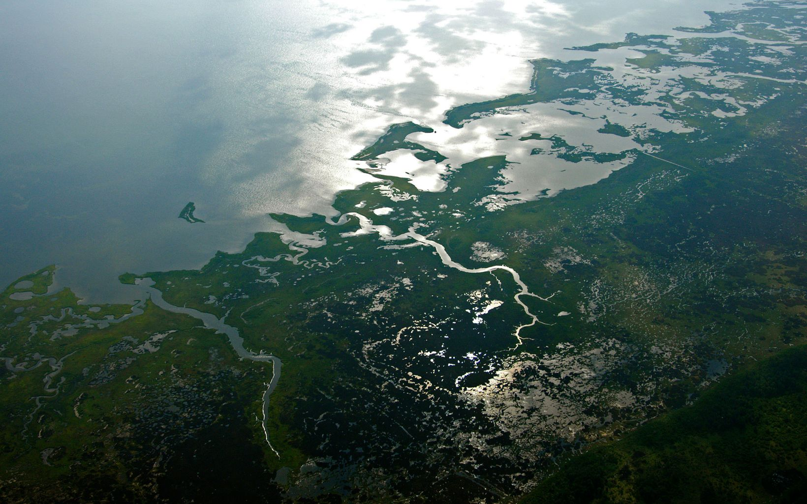 An aerial photo shows intricate pattern of coastal wetlands meeting the open water of the Chesapeake Bay.