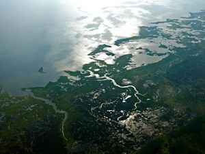 Aerial photograph of  the coastal area and wetlands.